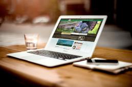 Criar site - criação de sites